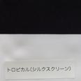 トロピカル_室内