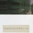 トロピカルシルクスクリーン_太陽光